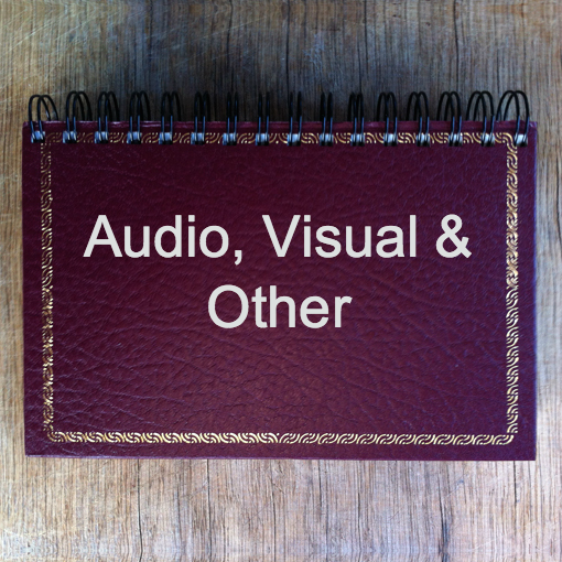 Audio-Visual Other