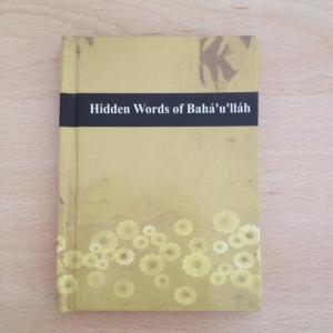 HiddenWords, Indian, Hardcover, HC