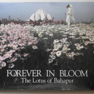 Forever in Bloom